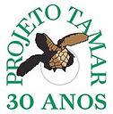logo_tamar.jpg