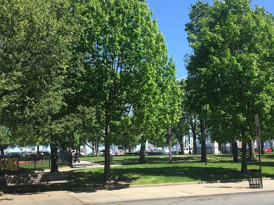 Riverview Fisk Park