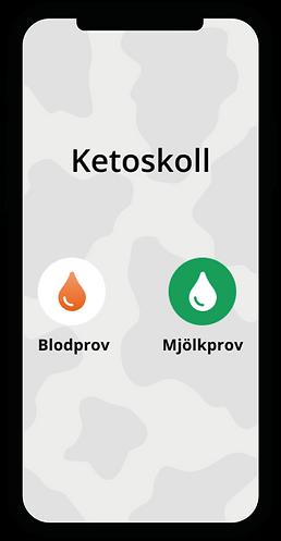 ketos-app-start-13.png