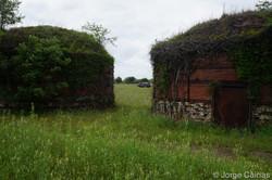 Dome Brick Buildings No.3