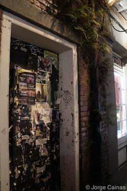 Ferns and a Door
