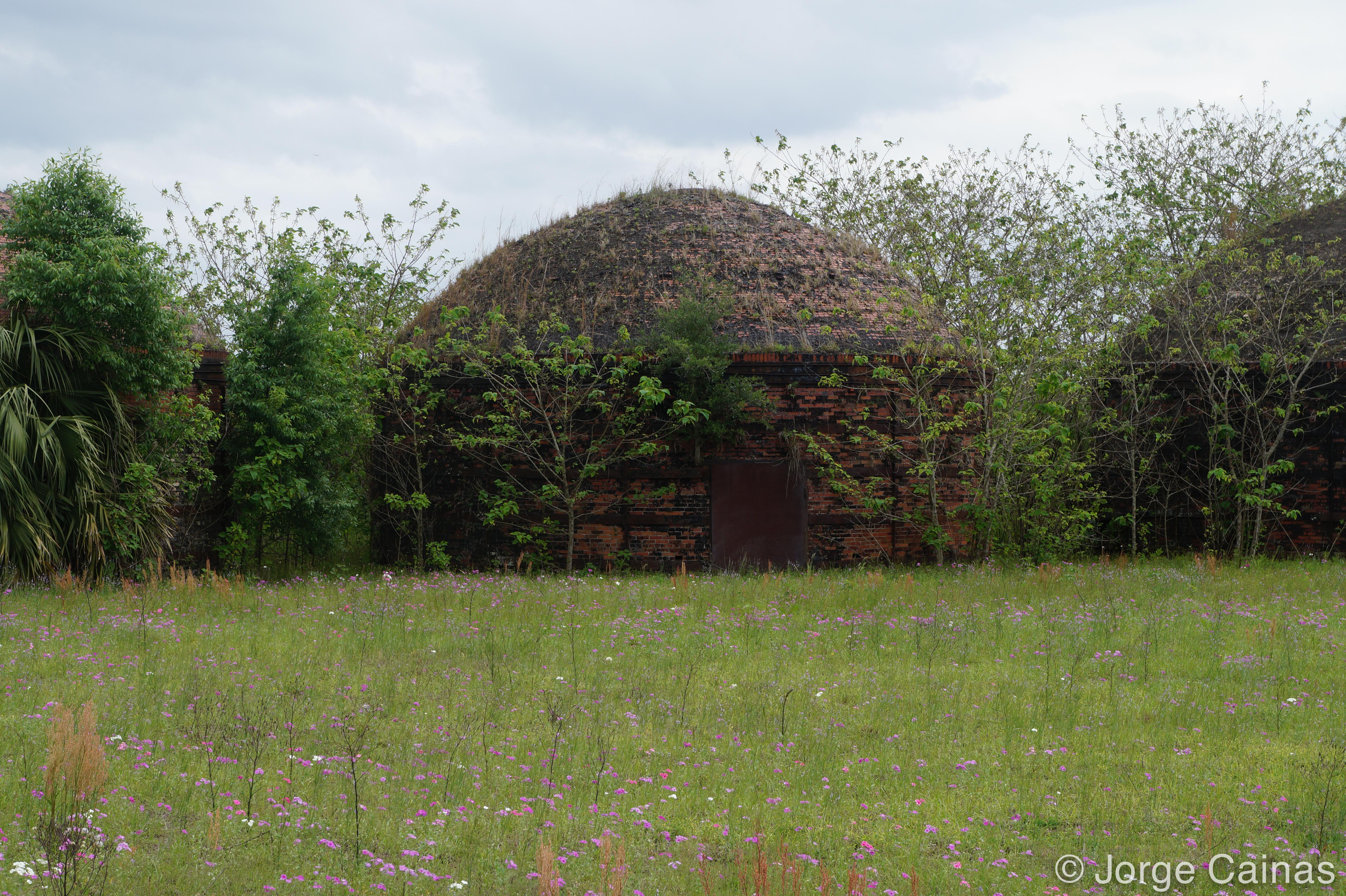 Dome Brick Buildings No.2