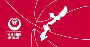 Team Elitus Okinawa-Banner.jpg