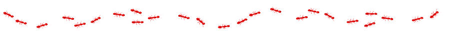 red fire ants clipart.png