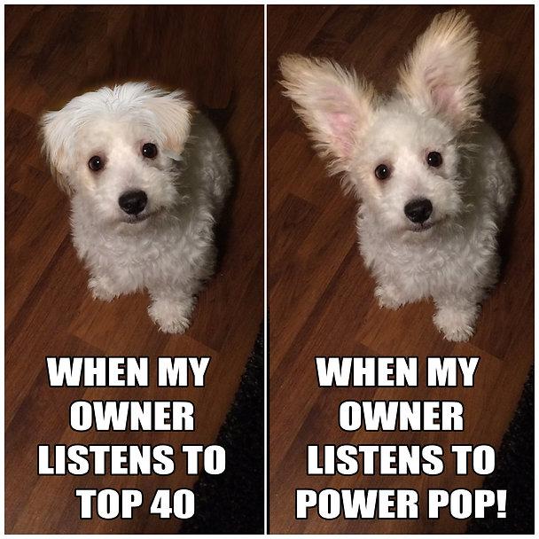 Dog Listens To Power Pop MemE.jpg