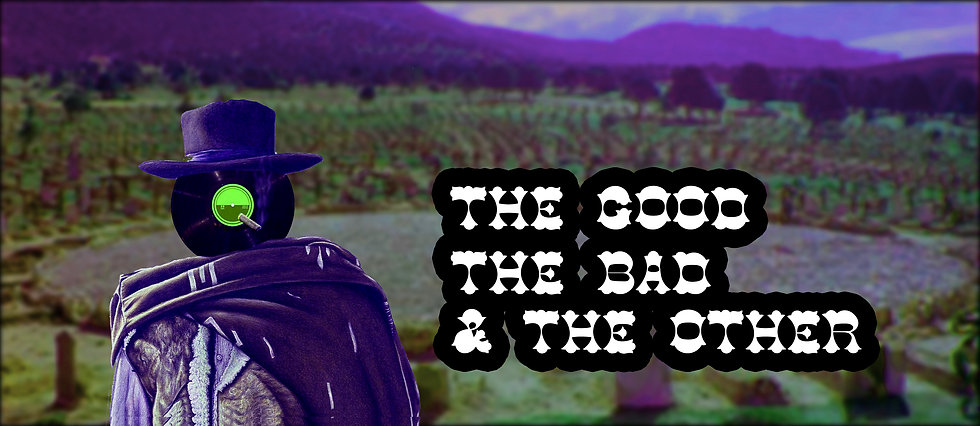 THE GOOD THE BAD AND THE OTHER TITLE  FL