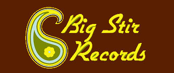 BIG STIR RECORDS LOGO yellow brown.jpg