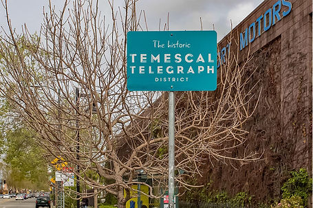temescal telegraph street sign.jpg