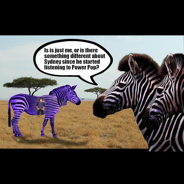 Zebra Purple Zebra Power Pop Meme square
