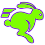 FAST RABBIT GRAPHIC.png