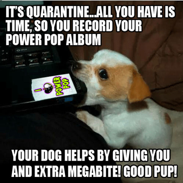 Dog Gives Megabite Power Pop Meme.jpg