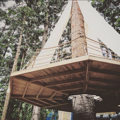 Hanging Tree House