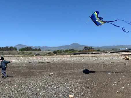 Wind Howling, Kite Flying