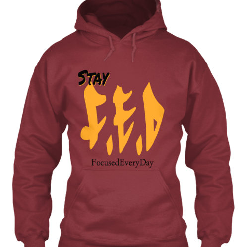 StayF.E.D (Focused EveryDay)