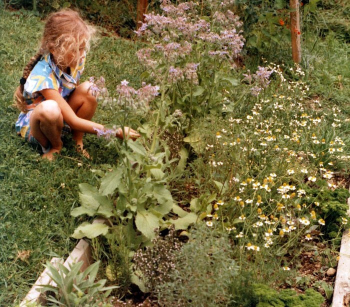 Early years in the garden