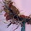 Thumbnail: Dried hoop wreath red, gold and green