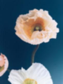 flowers, florist, warwick, warwickshire, wedding flowers, event flowers, florist, order flowers online