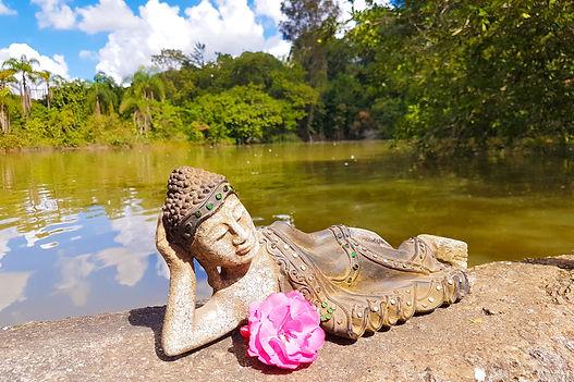 Aquiete sua mente como as folhas no fundo do rio