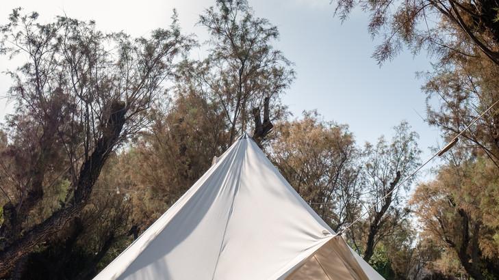 Tents_sml_3.jpg
