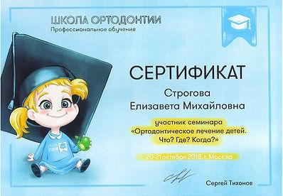 Строгова Елизавета Михайловна Сертификат