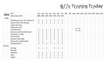 Training tracker.JPG