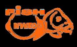 LogoFNFOrangeT.png