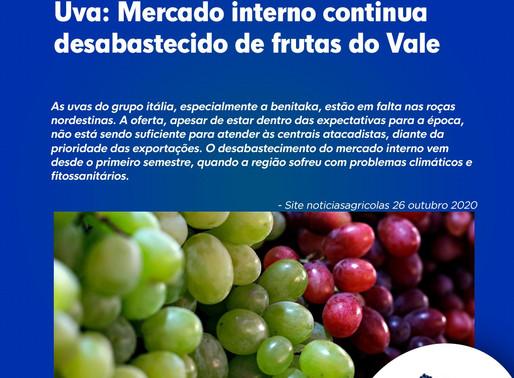 Uva: Mercado interno continua desabastecido de frutas do Vale
