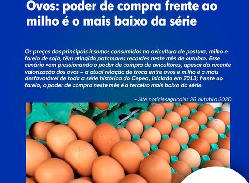 Ovos: poder de compra frente ao milho é o mais baixo da série