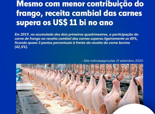 Mesmo com menor contribuição do frango, receita cambial das carnes supera os US$ 11 bi no ano
