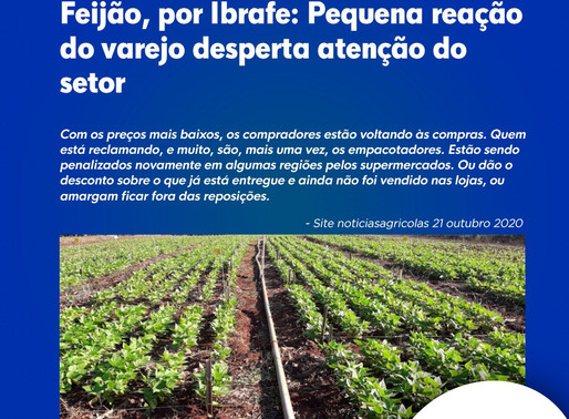 Feijão, por Ibrafe: Pequena reação do varejo desperta atenção do setor