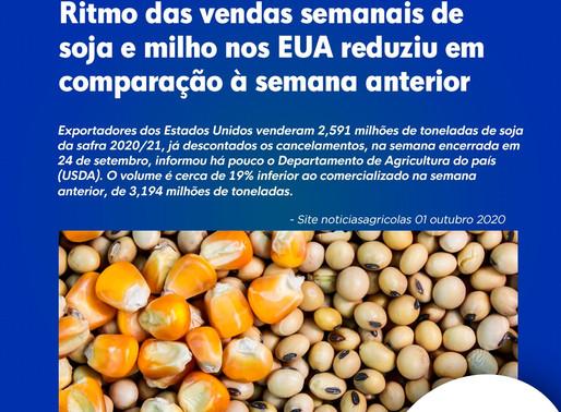 Ritmo das vendas semanais de soja e milho nos EUA reduziu em comparação à semana anterior