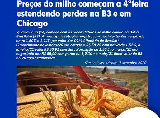 Preços do milho começam a 4ªfeira estendendo perdas na B3 e em Chicago