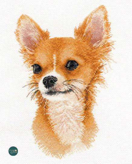 1001 Pequeño amigo. Chihuahua - OVEN - Kit de punto de cruz