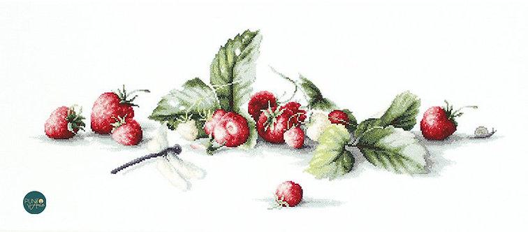 B2254 Etude con fresas - Luca-S - Kit de Punto de Cruz