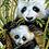 Thumbnail: 1159 Panda - Riolis - Kit de punto de cruz