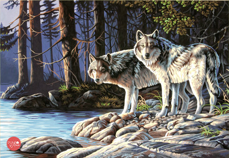 Lobos grises - 73-91445 Dimensions - Kit de Pintura por numero