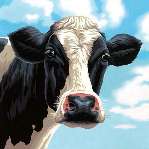 Vaca - 73-91731 Dimensions - Kit de Pintura por número