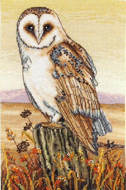 PCE604 Owl Horizon - Anchor - Kit de punto de cruz