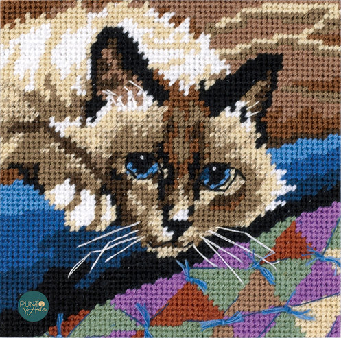 Gato tierno - 07228 Dimensions - Kit de petit point