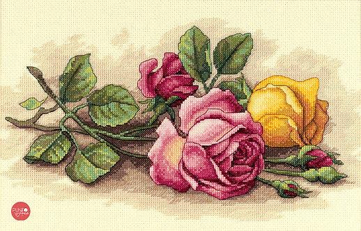 Los esquejes de rosas - 13720 Dimensions - Kit de punto de cruz