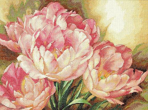 Trío de tulipanes - 35175 Dimensions - Kit de punto de cruz