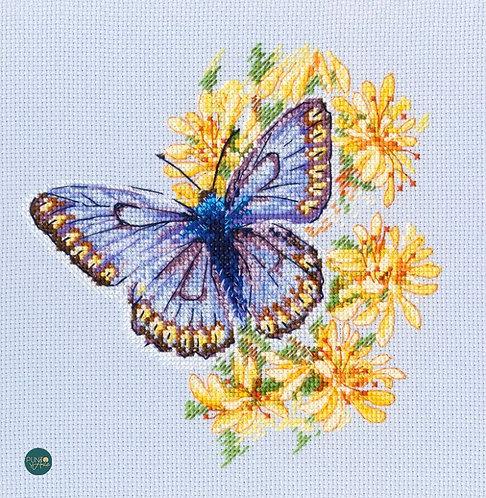 M750 Mariposa en la flor - RTO - Kit de punto de cruz