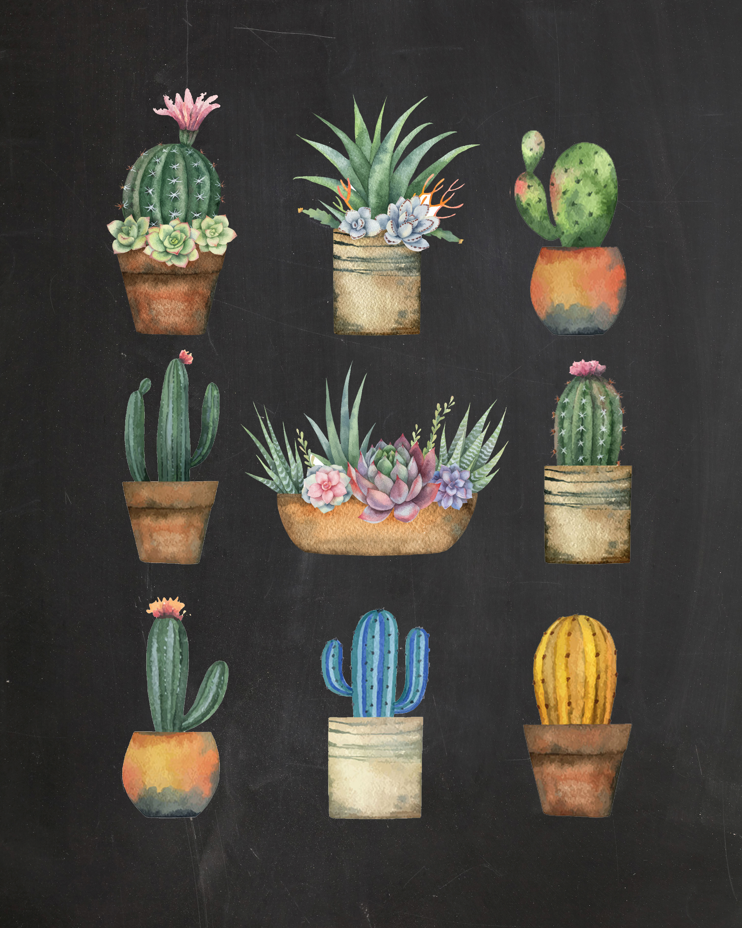 Cacti and Succulents Chalkboard