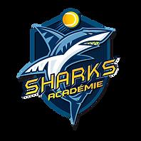 LOGO SHARKS ACADEMIE.png