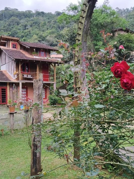 Rosas%20na%20Bilioteca_edited.jpg