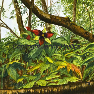 Garnet Solitaire - Woodland Setting