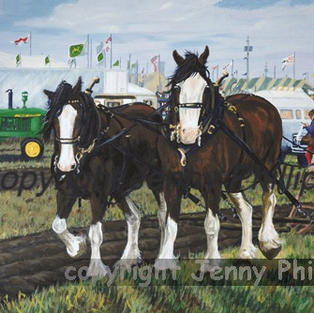 Honouring Elgin's Past Provincial Ploughing Matches