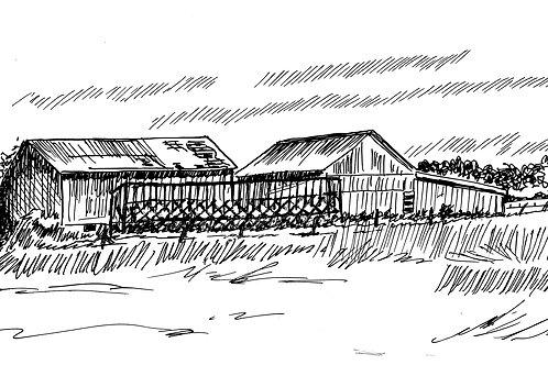 Barns and Corn Cribs