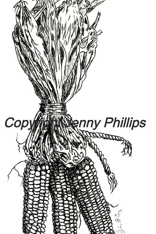 3 Cobs of Corn