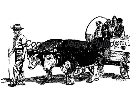Johnny Bobier and his Oxen, Rock & Rye